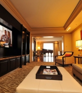 Presidential Suite - Media Room